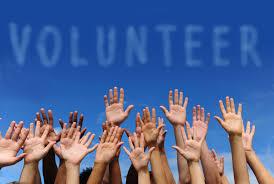 Stručni suradnici i volonteri